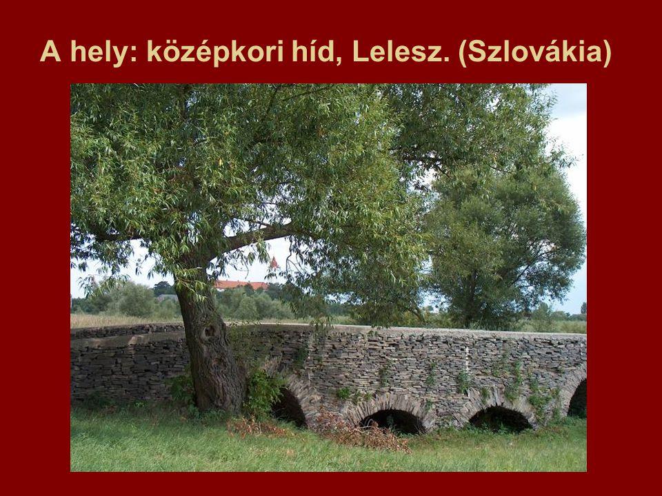 A hely: középkori híd, Lelesz. (Szlovákia)