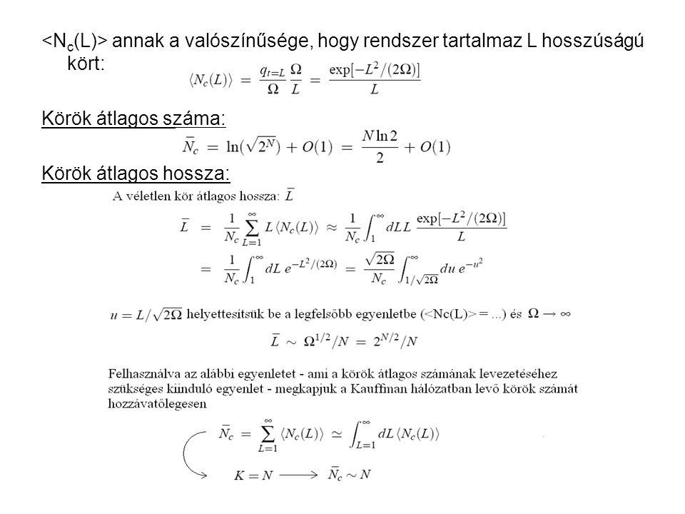annak a valószínűsége, hogy rendszer tartalmaz L hosszúságú kört: Körök átlagos száma: Körök átlagos hossza: