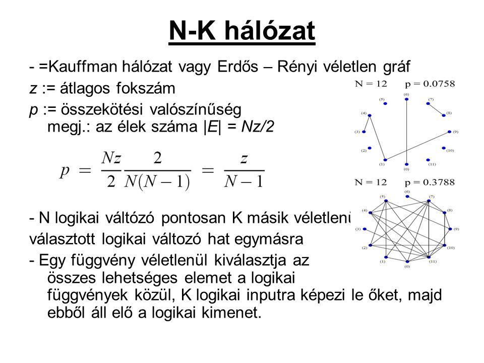 N-K hálózat - =Kauffman hálózat vagy Erdős – Rényi véletlen gráf z := átlagos fokszám p := összekötési valószínűség megj.: az élek száma |E| = Nz/2 - N logikai váltózó pontosan K másik véletlenül választott logikai változó hat egymásra - Egy függvény véletlenül kiválasztja az összes lehetséges elemet a logikai függvények közül, K logikai inputra képezi le őket, majd ebből áll elő a logikai kimenet.