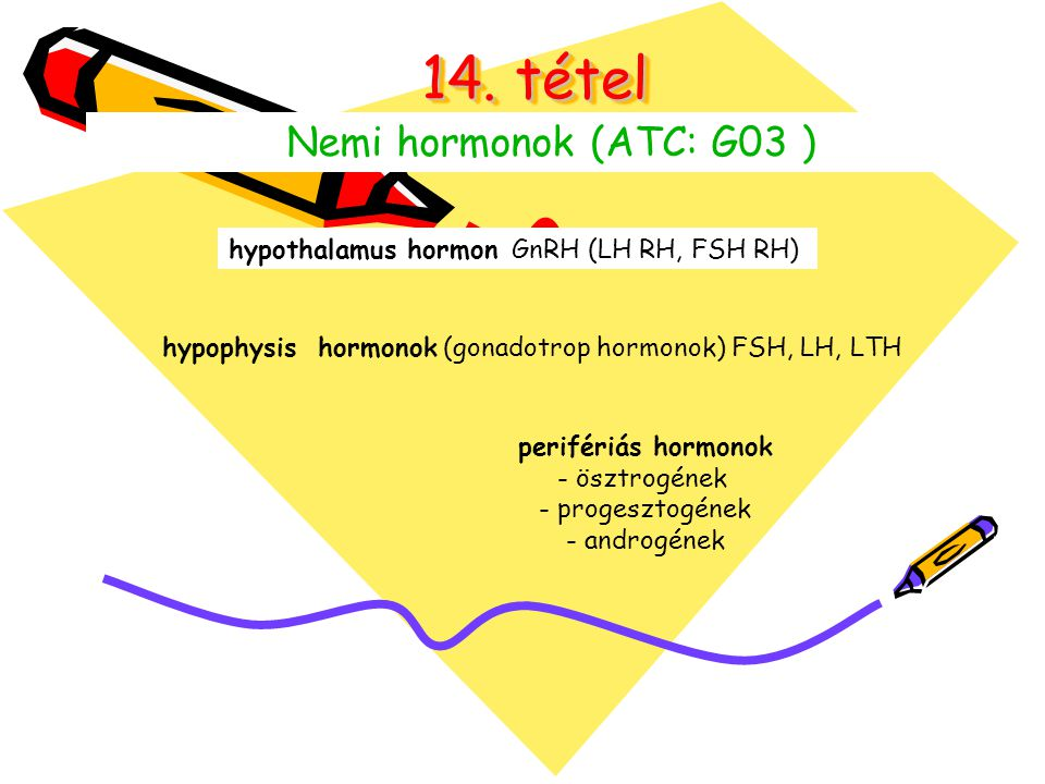14. tétel Nemi hormonok (ATC: G03 ) hypothalamus hormon GnRH (LH RH, FSH RH) hypophysis hormonok (gonadotrop hormonok) FSH, LH, LTH perifériás hormono