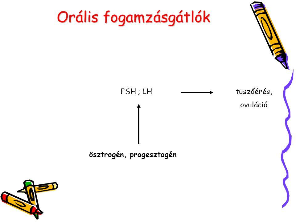 Orális fogamzásgátlók ösztrogén, progesztogén FSH ; LHtüszőérés, ovuláció