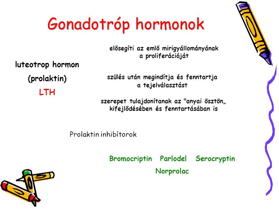 Gonadotróp hormonok luteotrop hormon (prolaktin) LTH elősegíti az emlő mirigyállományának a proliferációját szülés után megindítja és fenntartja a tej