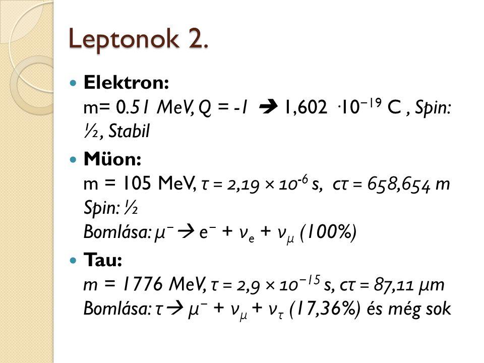 Leptonok 2. Elektron: m= 0.51 MeV, Q = -1  1,602 ·10 − 19 C, Spin: ½, Stabil Müon: m = 105 MeV, τ = 2,19 × 10 -6 s, c τ = 658,654 m Spin: ½ Bomlása:
