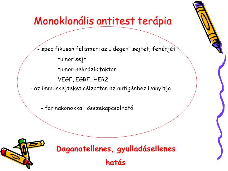 """Monoklonális antitest terápia - specifikusan felismeri az """"idegen"""" sejtet, fehérjét tumor sejt tumor nekrózis faktor VEGF, EGRF, HER2 - az immunsejtek"""