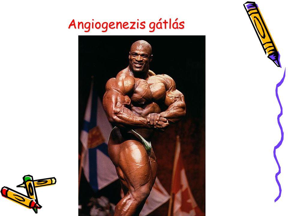 Angiogenezis gátlás