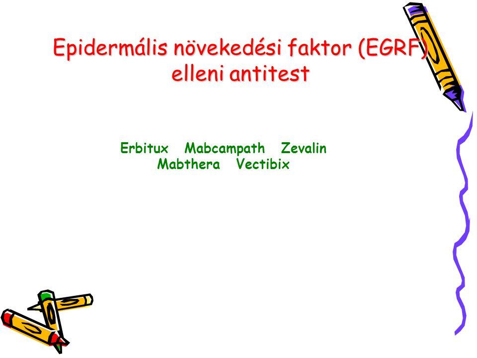 Epidermális növekedési faktor (EGRF) elleni antitest Erbitux Mabcampath Zevalin Mabthera Vectibix