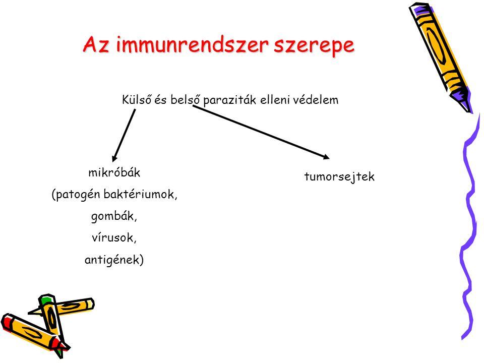 Az immunrendszer szerepe Külső és belső paraziták elleni védelem mikróbák (patogén baktériumok, gombák, vírusok, antigének) tumorsejtek