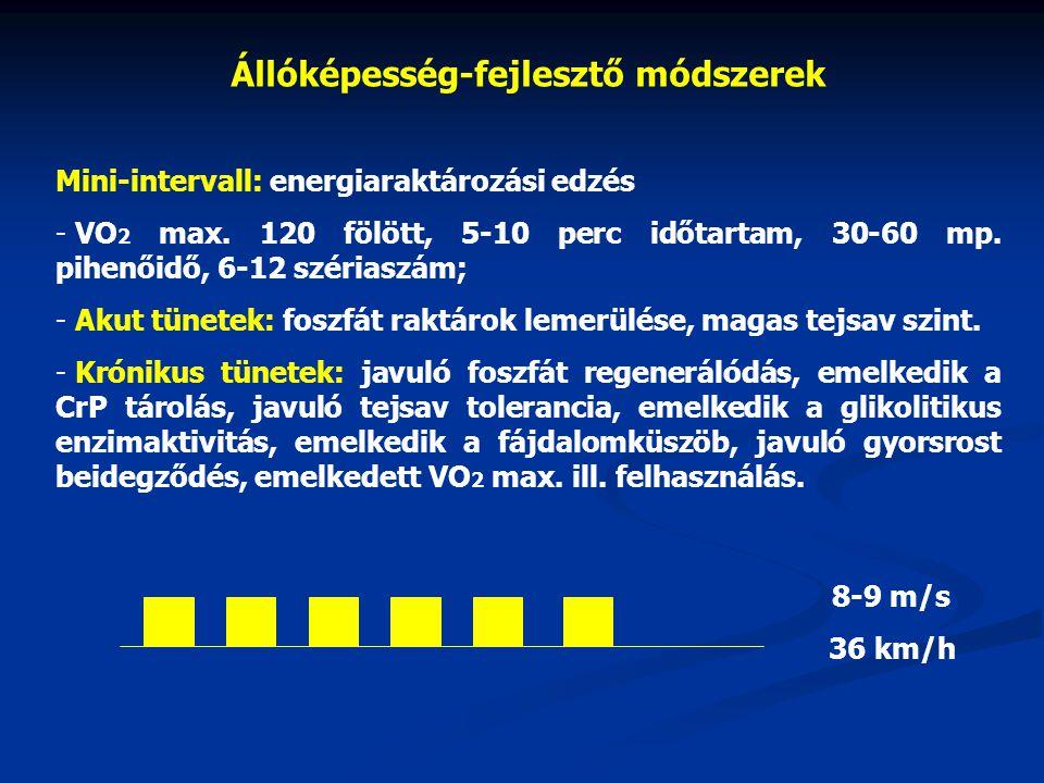 Állóképesség-fejlesztő módszerek Mini-intervall: energiaraktározási edzés - VO 2 max.