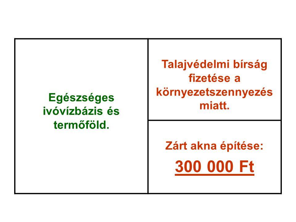Egészséges ivóvízbázis és termőföld. Talajvédelmi bírság fizetése a környezetszennyezés miatt. Zárt akna építése: 300 000 Ft