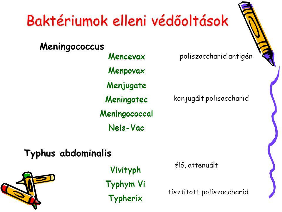 Baktériumok elleni védőoltások Meningococcus Mencevax Menpovax poliszaccharid antigén Typhus abdominalis Vivityph Typhym Vi Typherix tisztított polisz