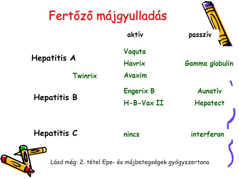 Fertőző májgyulladás Hepatitis A aktív passzív Vaquta Havrix Gamma globulin Avaxim Hepatitis B Engerix B Aunatív H-B-Vax II Hepatect Hepatitis C nincs