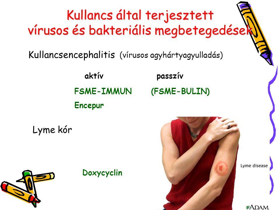 Kullancs által terjesztett vírusos és bakteriális megbetegedések aktív passzív FSME-IMMUN (FSME-BULIN) Encepur Lyme kór Doxycyclin Kullancsencephaliti