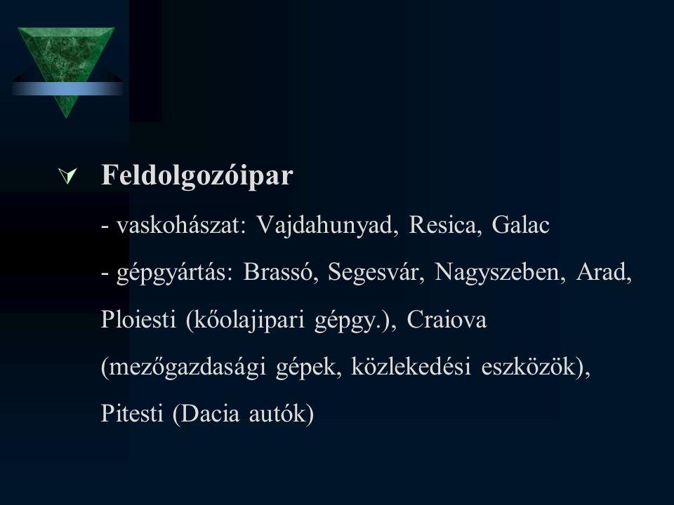  Feldolgozóipar - vaskohászat: Vajdahunyad, Resica, Galac - gépgyártás: Brassó, Segesvár, Nagyszeben, Arad, Ploiesti (kőolajipari gépgy.), Craiova (m