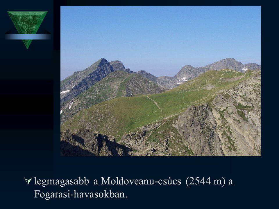  legmagasabb a Moldoveanu-csúcs (2544 m) a Fogarasi-havasokban.