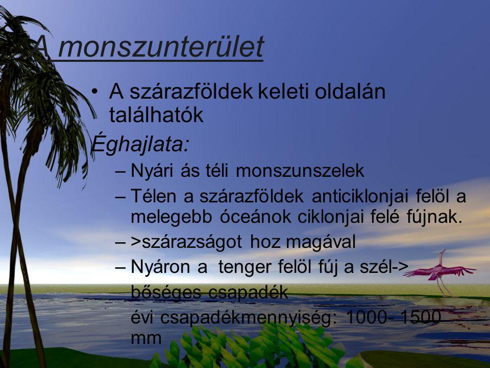 A monszunterület A szárazföldek keleti oldalán találhatók Éghajlata: –Nyári ás téli monszunszelek –Télen a szárazföldek anticiklonjai felöl a melegebb
