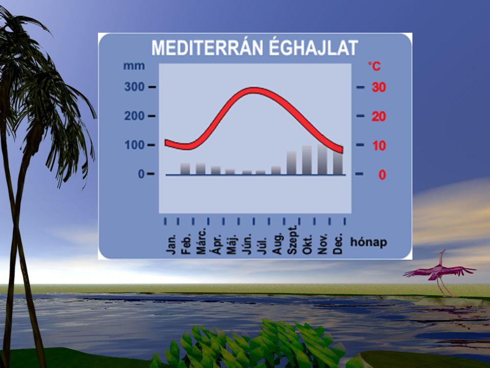 Vízrajza: Kevésbé szélsőséges, mint a mediterrán területeken, de nyáron gyakoriak a pusztító árvizek