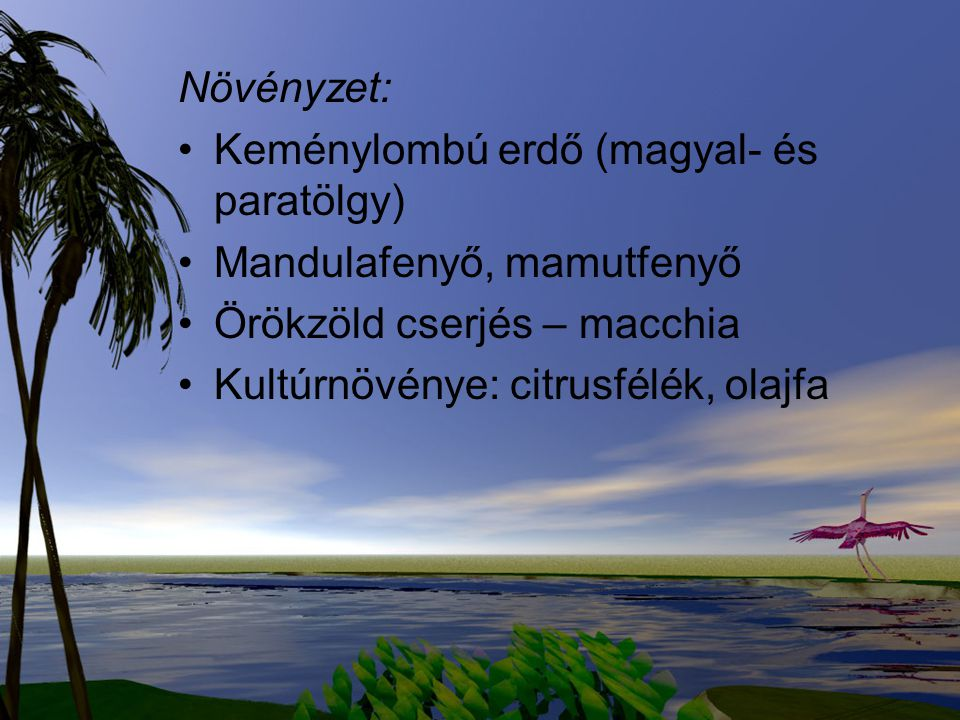 Növényzet: Keménylombú erdő (magyal- és paratölgy) Mandulafenyő, mamutfenyő Örökzöld cserjés – macchia Kultúrnövénye: citrusfélék, olajfa