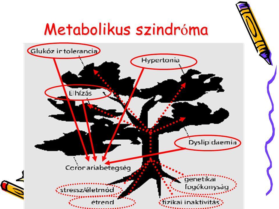 endothel glucos hypertonia hyperlipidaemia hyperglucosaeria
