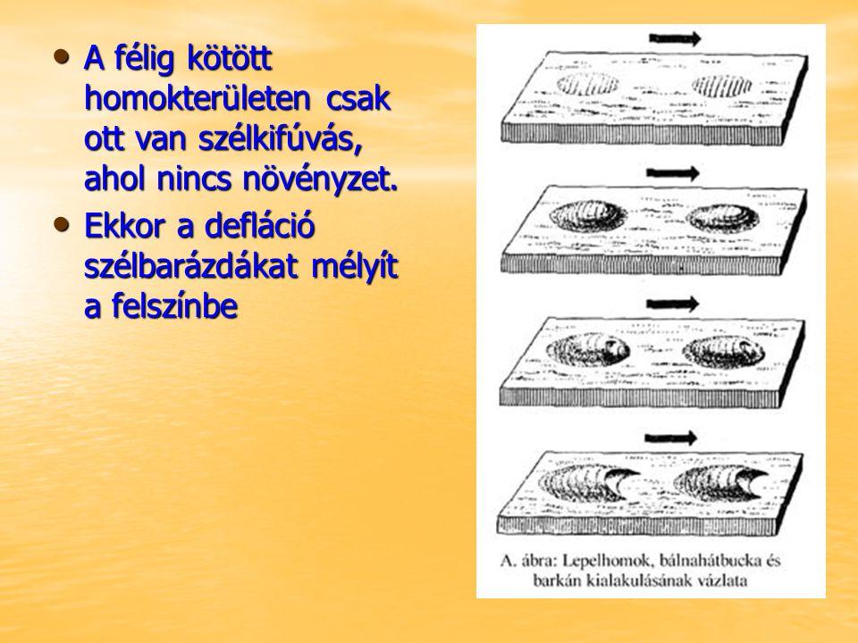 A szél felhalmozó munkája Ahol a szél sebessége lecsökken, ott a homokanyagot dűnékbe, buckákba lerakja Ahol a szél sebessége lecsökken, ott a homokanyagot dűnékbe, buckákba lerakja Ilyen dűnealakzatok: Ilyen dűnealakzatok: –Barkánok –Keresztirányú dűnék