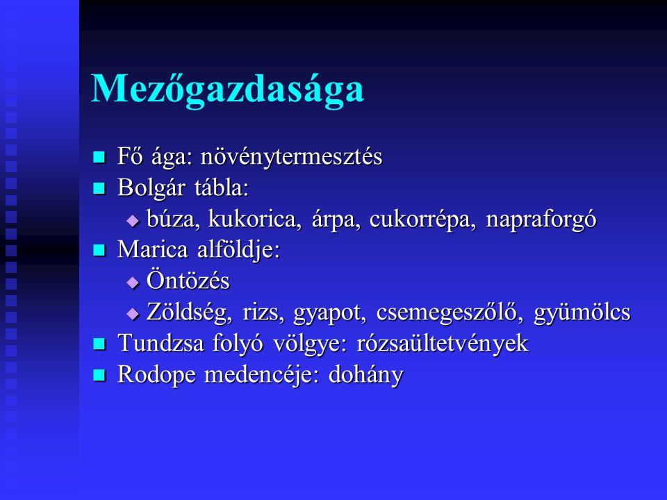 Mezőgazdasága Fő ága: növénytermesztés Fő ága: növénytermesztés Bolgár tábla: Bolgár tábla:  búza, kukorica, árpa, cukorrépa, napraforgó Marica alföl