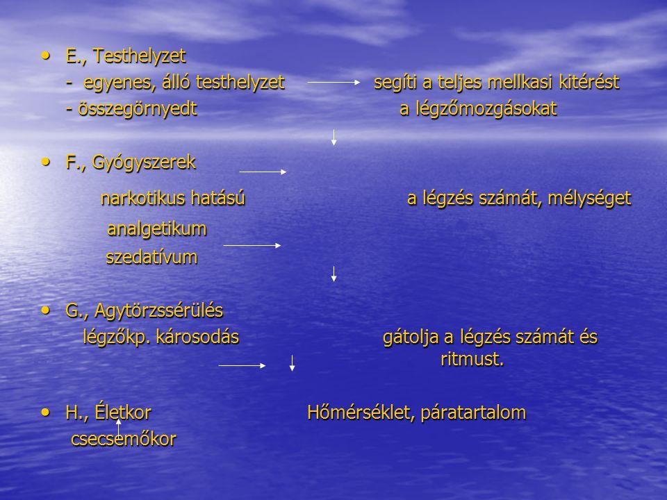 A pulzus számának változásai Szapora pulzus – tachycardia: Szapora pulzus – tachycardia: - fln.