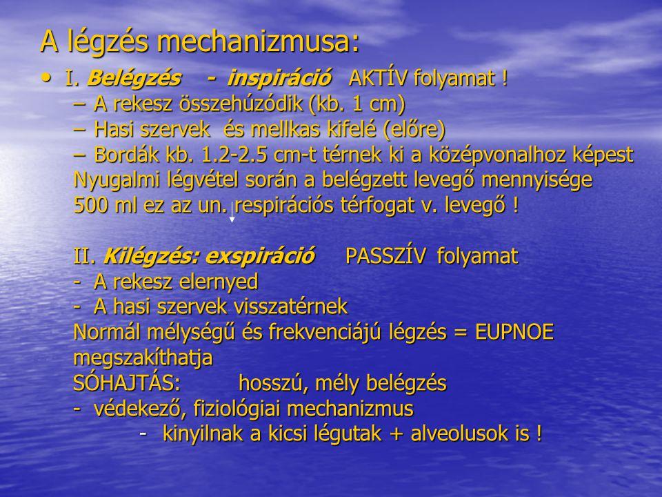 A testhőmérséklet Mértékegysége: Celsius -- °C vagy Kelvin- fok – K Normál testhőmérséklet: 36-37°C (+0,5 °C)