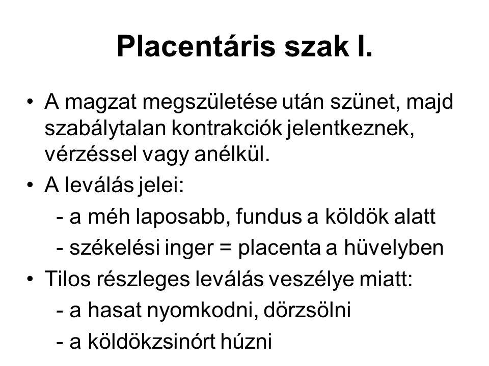 Placentáris szak I. A magzat megszületése után szünet, majd szabálytalan kontrakciók jelentkeznek, vérzéssel vagy anélkül. A leválás jelei: - a méh la