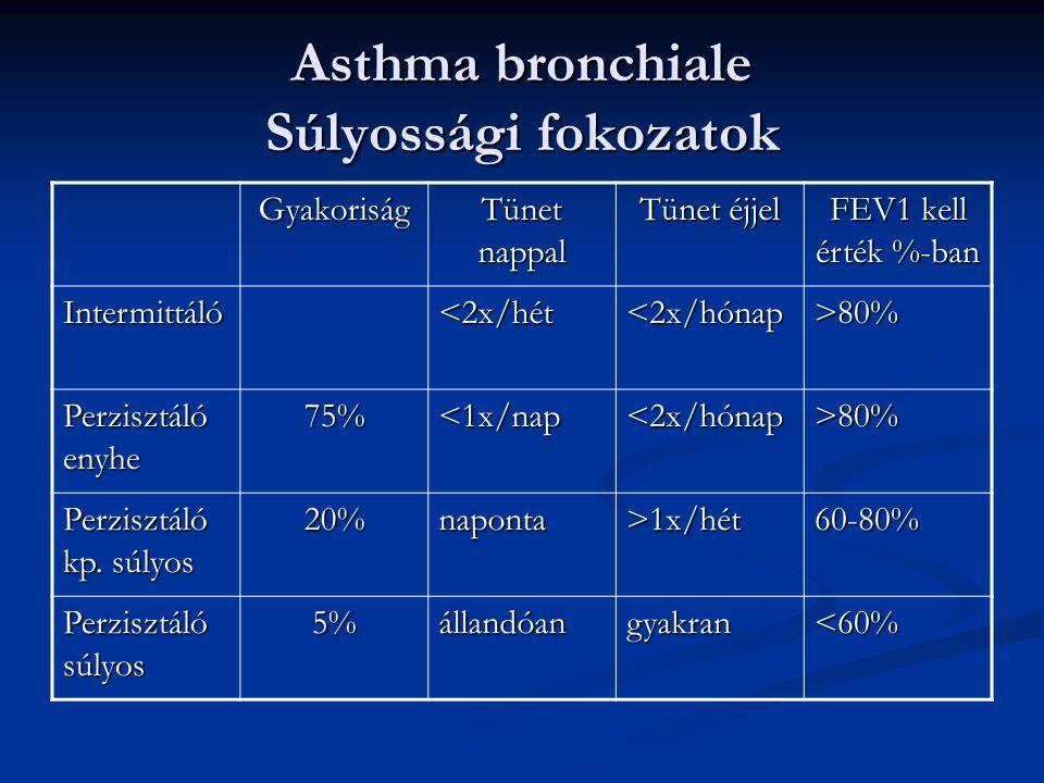 Asthma bronchiale Súlyossági fokozatok Gyakoriság Tünet nappal Tünet éjjel FEV1 kell érték %-ban Intermittáló<2x/hét<2x/hónap>80% Perzisztáló enyhe 75