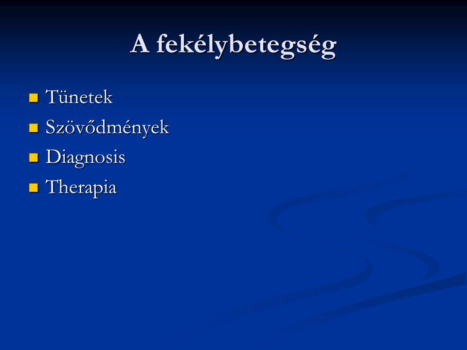 A fekélybetegség Tünetek Tünetek Szövődmények Szövődmények Diagnosis Diagnosis Therapia Therapia