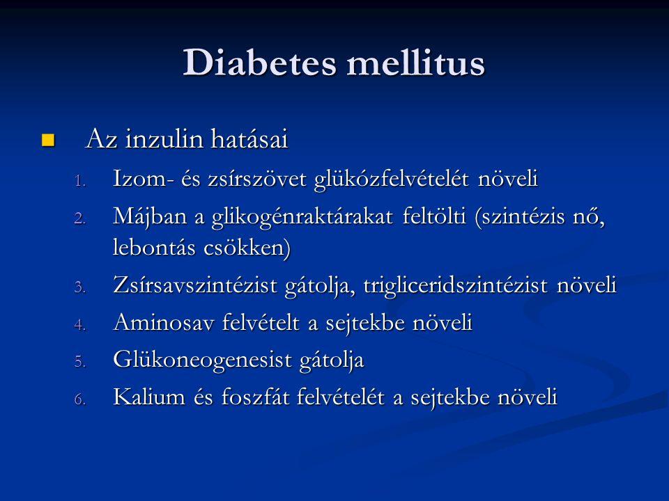 Diabetes mellitus Az inzulin hatásai Az inzulin hatásai 1. Izom- és zsírszövet glükózfelvételét növeli 2. Májban a glikogénraktárakat feltölti (szinté
