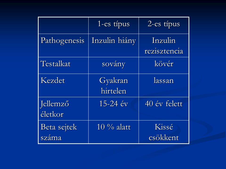 1-es típus 2-es típus Pathogenesis Inzulin hiány Inzulin rezisztencia Testalkatsoványkövér Kezdet Gyakran hirtelen lassan Jellemző életkor 15-24 év 40
