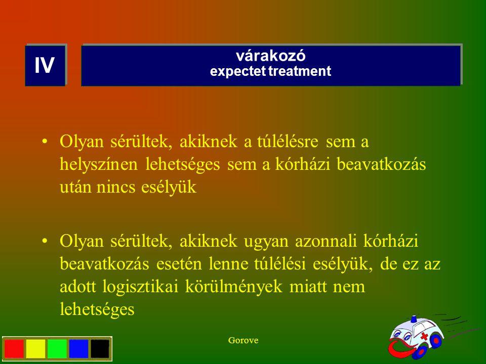 Gorove Olyan sérültek, akiknek a túlélésre sem a helyszínen lehetséges sem a kórházi beavatkozás után nincs esélyük Olyan sérültek, akiknek ugyan azon