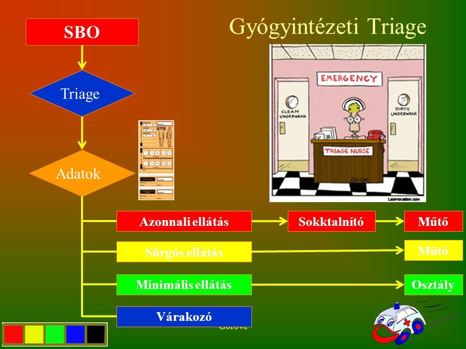 Gyógyintézeti Triage Gorove SBO Triage Adatok Azonnali ellátás Sürgős ellátás Minimális ellátás Várakozó SokktalnítóMűtő Osztály