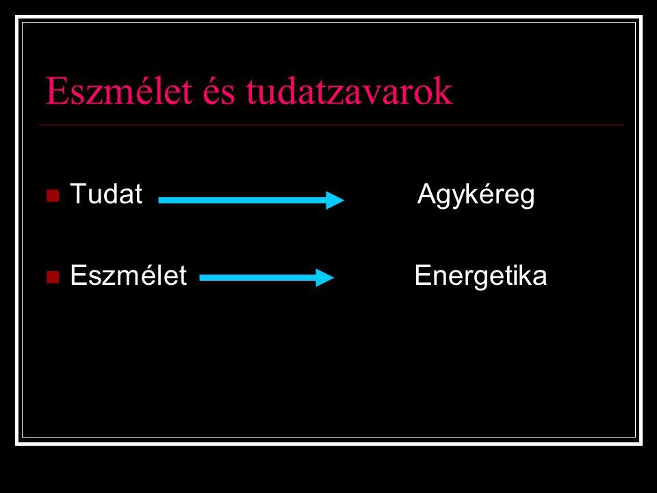 Eszmélet és tudatzavarok Tudat Agykéreg Eszmélet Energetika