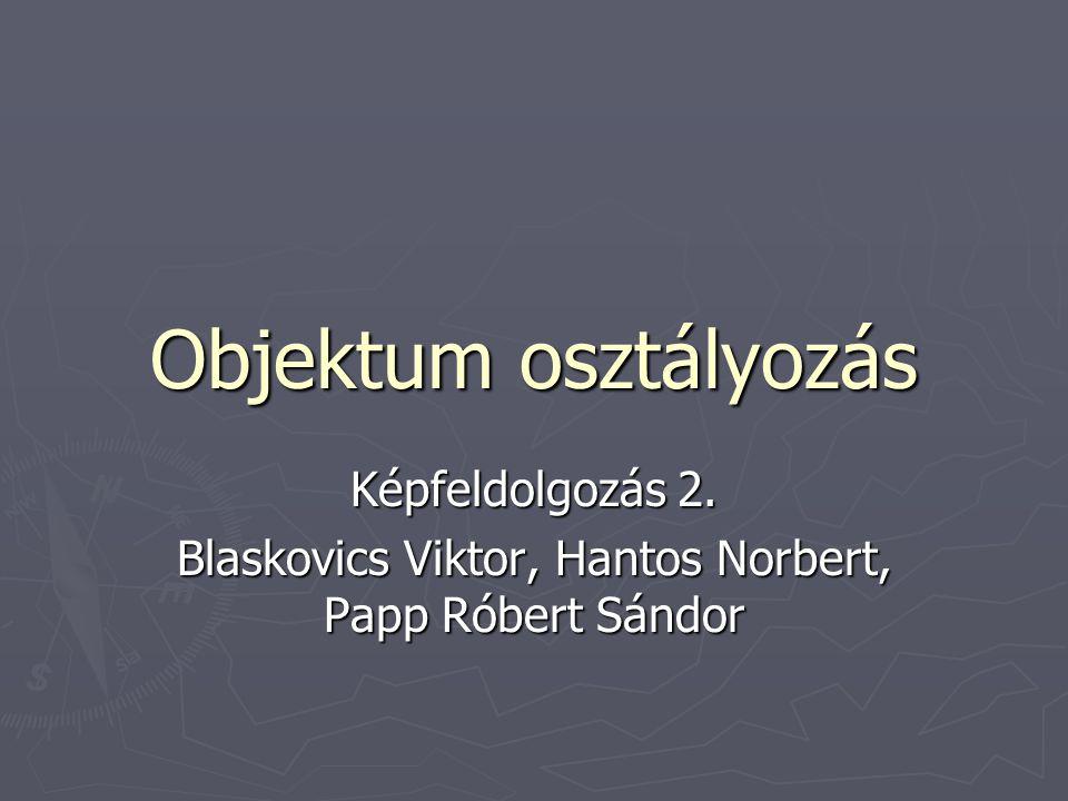 Objektum osztályozás Képfeldolgozás 2. Blaskovics Viktor, Hantos Norbert, Papp Róbert Sándor