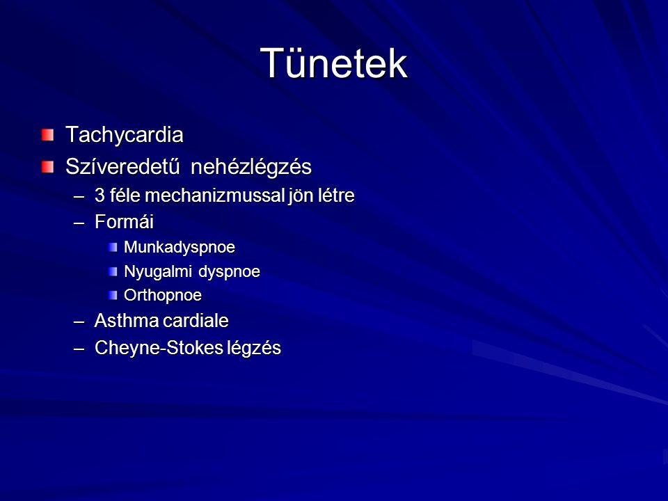 Tünetek Tachycardia Szíveredetű nehézlégzés –3 féle mechanizmussal jön létre –Formái Munkadyspnoe Nyugalmi dyspnoe Orthopnoe –Asthma cardiale –Cheyne-
