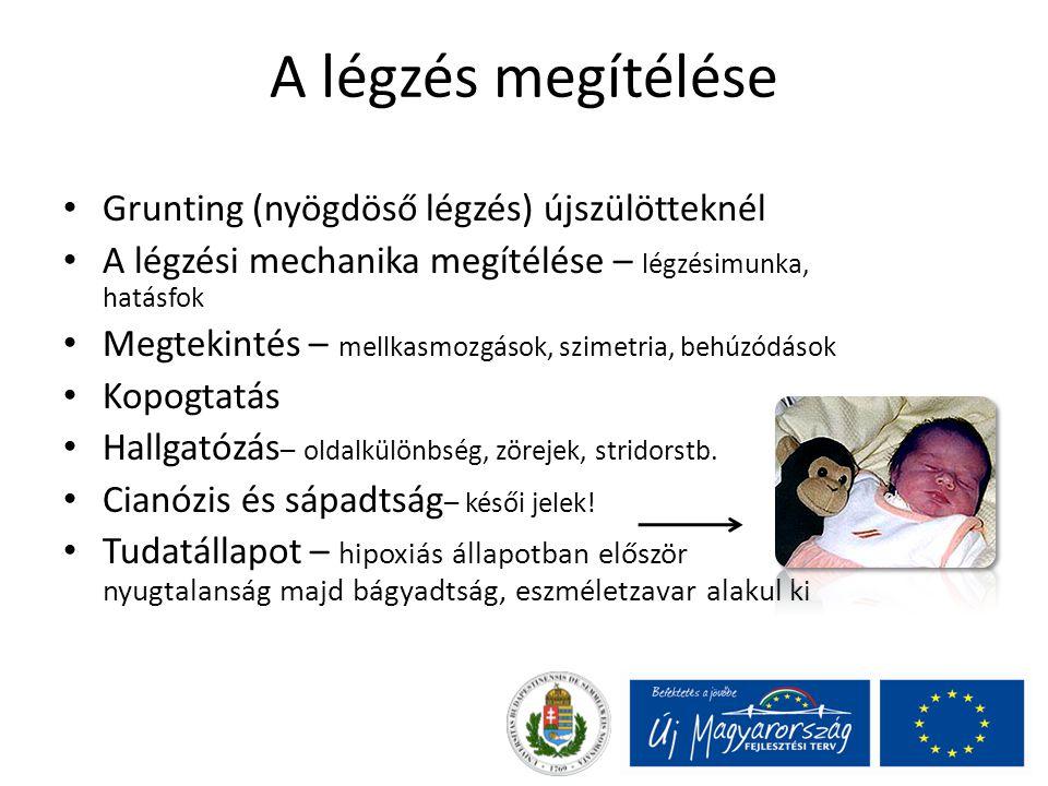 A légzés megítélése Grunting (nyögdöső légzés) újszülötteknél A légzési mechanika megítélése – légzésimunka, hatásfok Megtekintés – mellkasmozgások, s