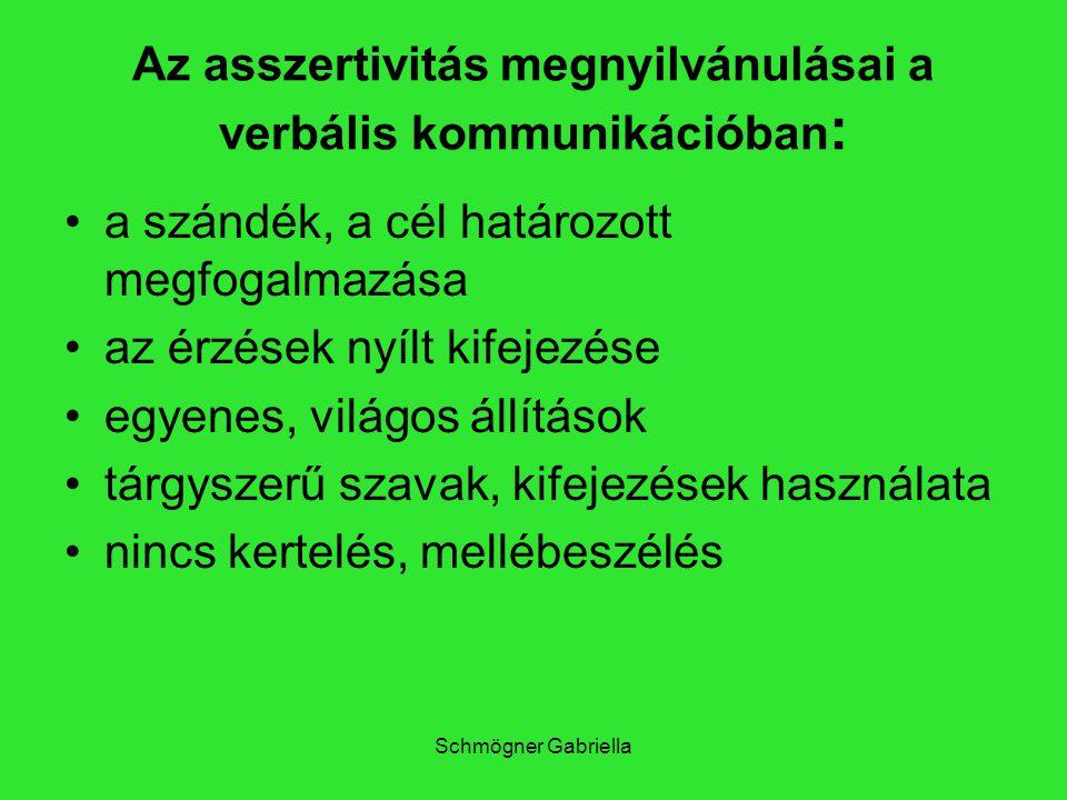 Schmögner Gabriella Az asszertivitás megnyilvánulásai a verbális kommunikációban : a szándék, a cél határozott megfogalmazása az érzések nyílt kifejez
