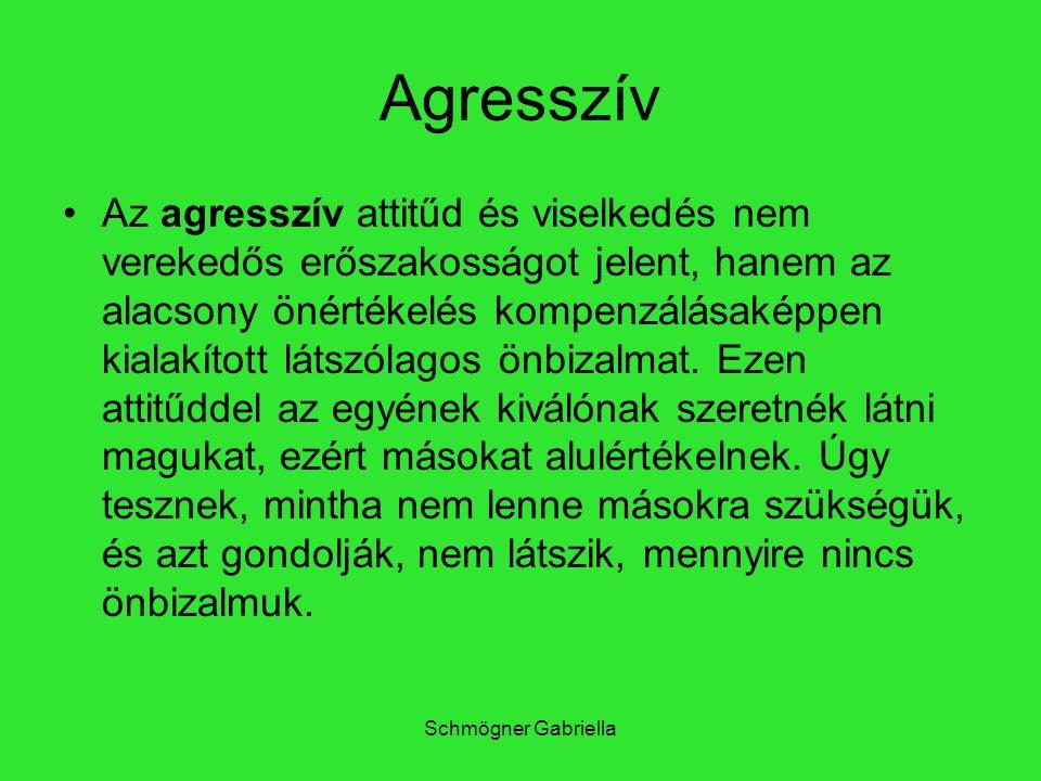 Schmögner Gabriella Agresszív Az agresszív attitűd és viselkedés nem verekedős erőszakosságot jelent, hanem az alacsony önértékelés kompenzálásaképpen