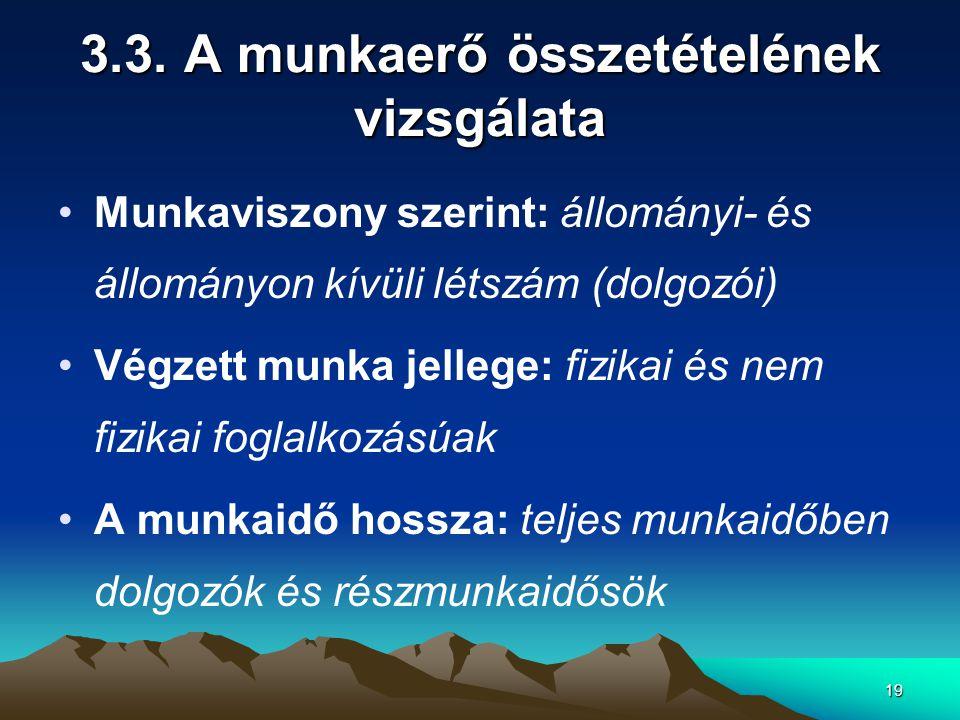 19 3.3. A munkaerő összetételének vizsgálata Munkaviszony szerint: állományi- és állományon kívüli létszám (dolgozói) Végzett munka jellege: fizikai é