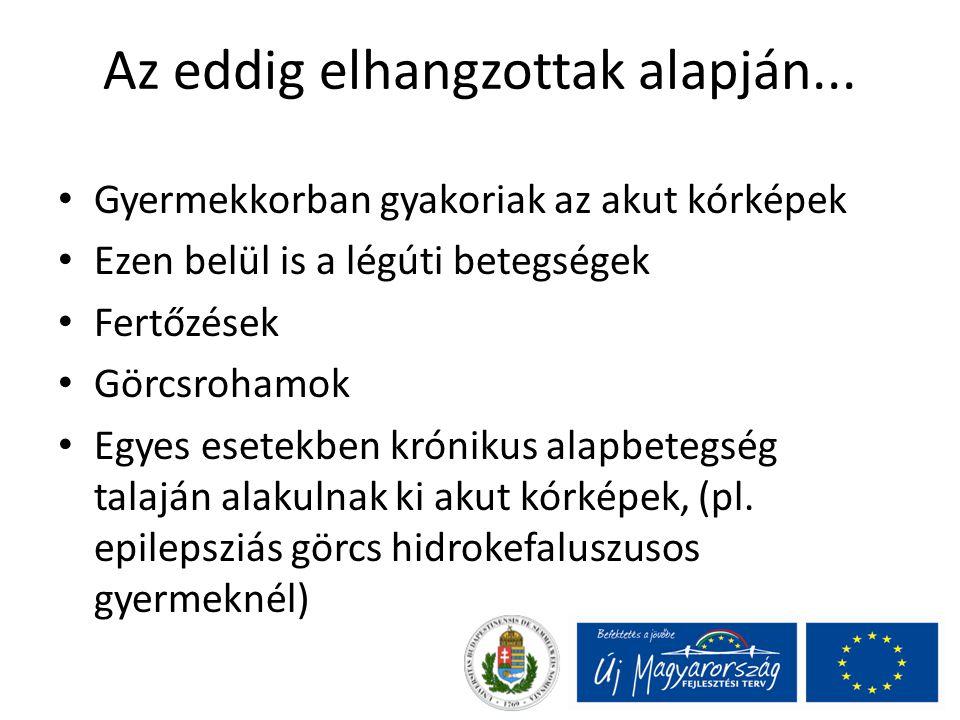 Status epilepticus (okok) Lázgörcs Gyógyszerelés változás, kihagyás epilepsziás betegnél Anyagcsere-elektrolit eltérés Hipoxia, agyi véráramlás csökkenés Agynyomás- emelkedés