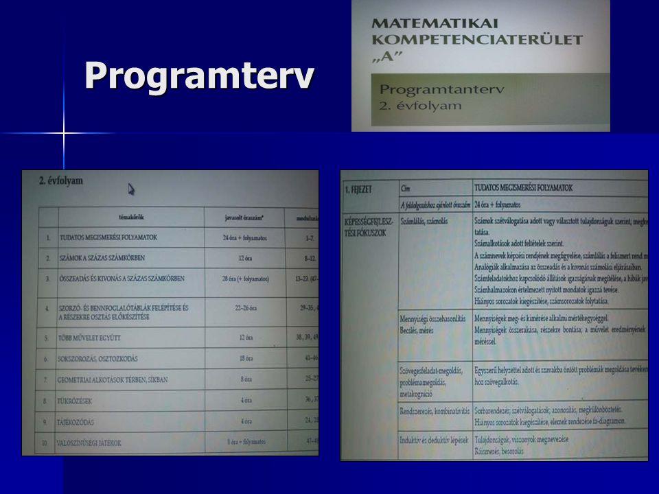 Programterv