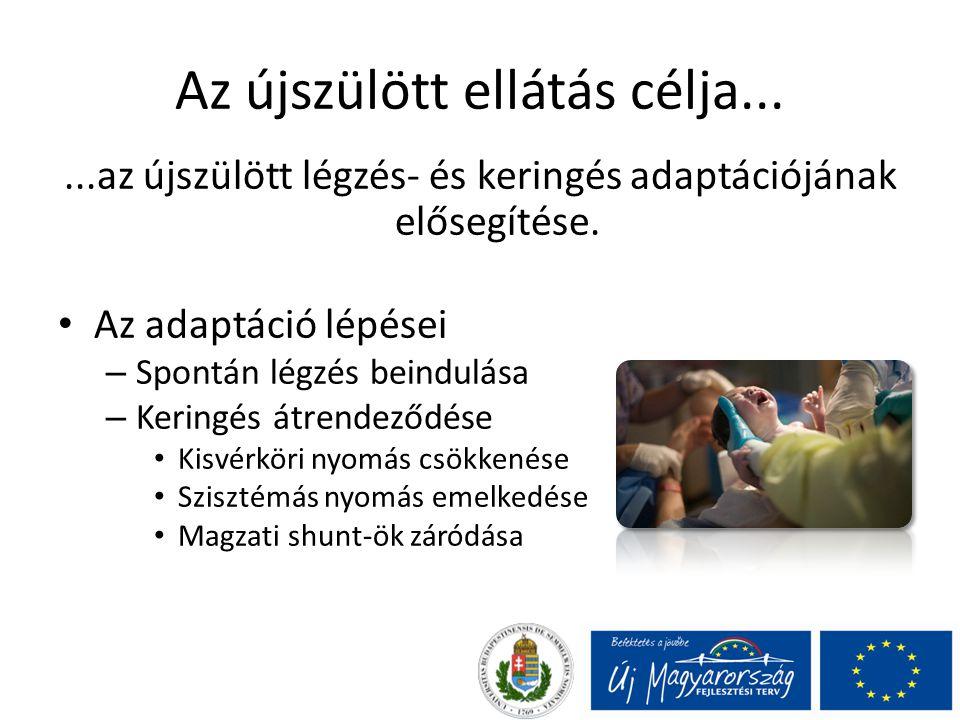 Az újszülött ellátás célja......az újszülött légzés- és keringés adaptációjának elősegítése.