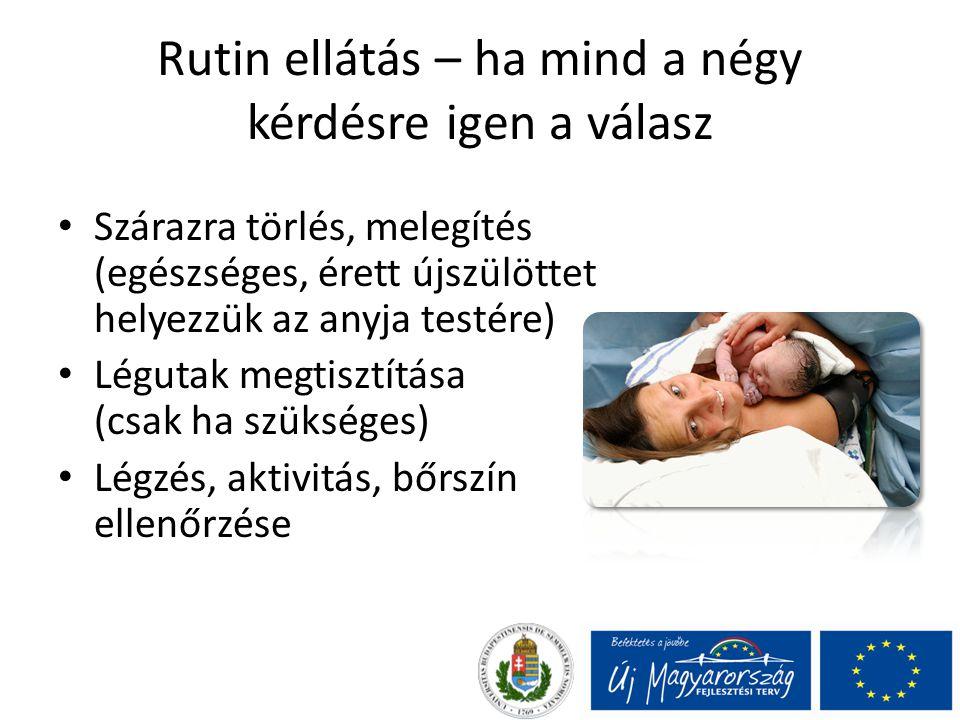 Rutin ellátás – ha mind a négy kérdésre igen a válasz Szárazra törlés, melegítés (egészséges, érett újszülöttet helyezzük az anyja testére) Légutak megtisztítása (csak ha szükséges) Légzés, aktivitás, bőrszín ellenőrzése