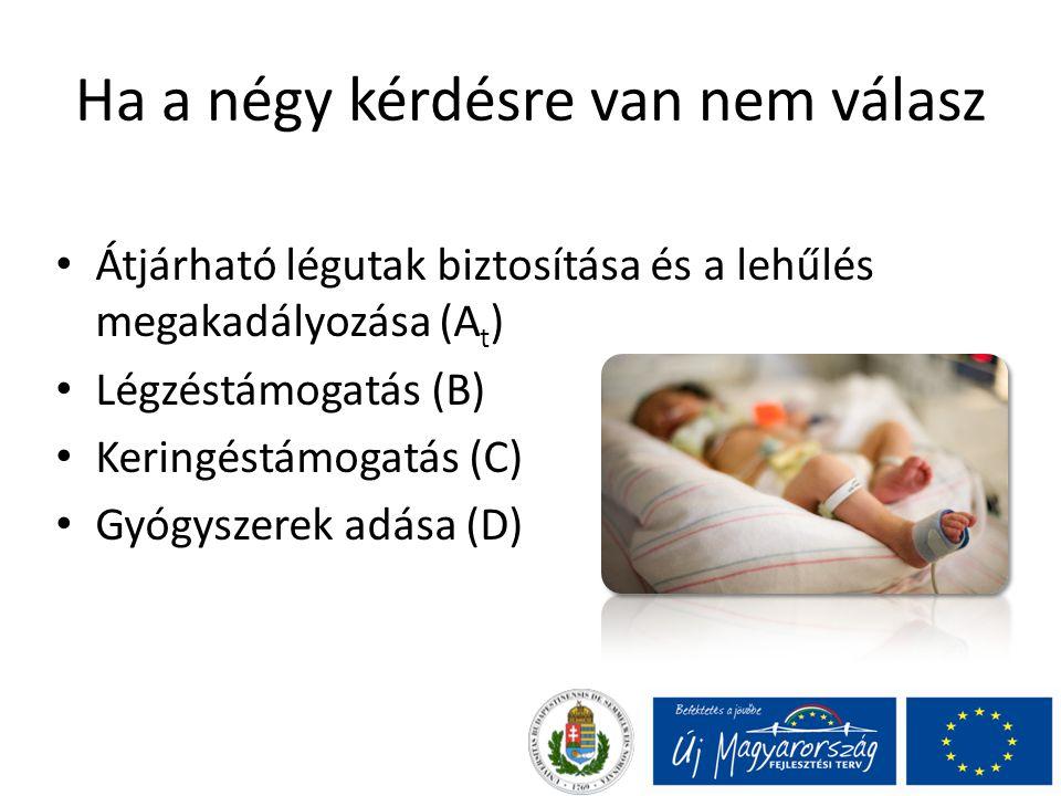 Ha a négy kérdésre van nem válasz Átjárható légutak biztosítása és a lehűlés megakadályozása (A t ) Légzéstámogatás (B) Keringéstámogatás (C) Gyógyszerek adása (D)