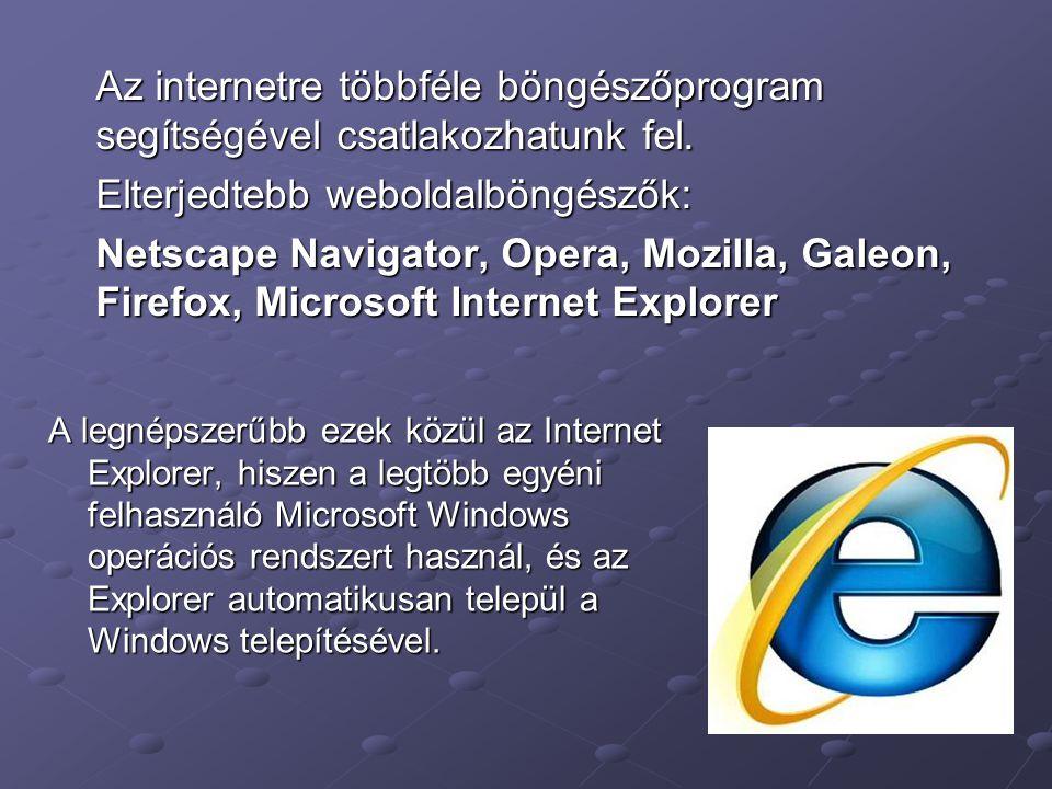 Az internetre többféle böngészőprogram segítségével csatlakozhatunk fel. Elterjedtebb weboldalböngészők: Netscape Navigator, Opera, Mozilla, Galeon, F
