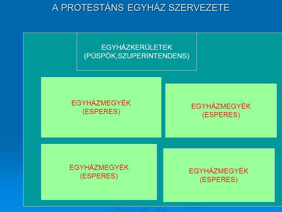 A PROTESTÁNS EGYHÁZ SZERVEZETE EGYHÁZKERÜLETEK (PÜSPÖK,SZUPERINTENDENS) EGYHÁZMEGYÉK (ESPERES) EGYHÁZMEGYÉK (ESPERES) EGYHÁZMEGYÉK (ESPERES) EGYHÁZMEG