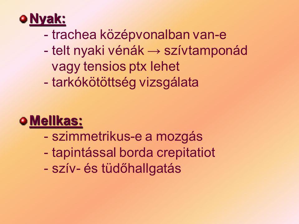 Has: - hasi sérülésre utaló jelek: → haematoma → ütés → horzsolás nyoma - izomvédekezés van-eMedence: - csípőcsontok tapintásakor crepitatio van-e - genitáliák vizsgálata ( here torquatio)