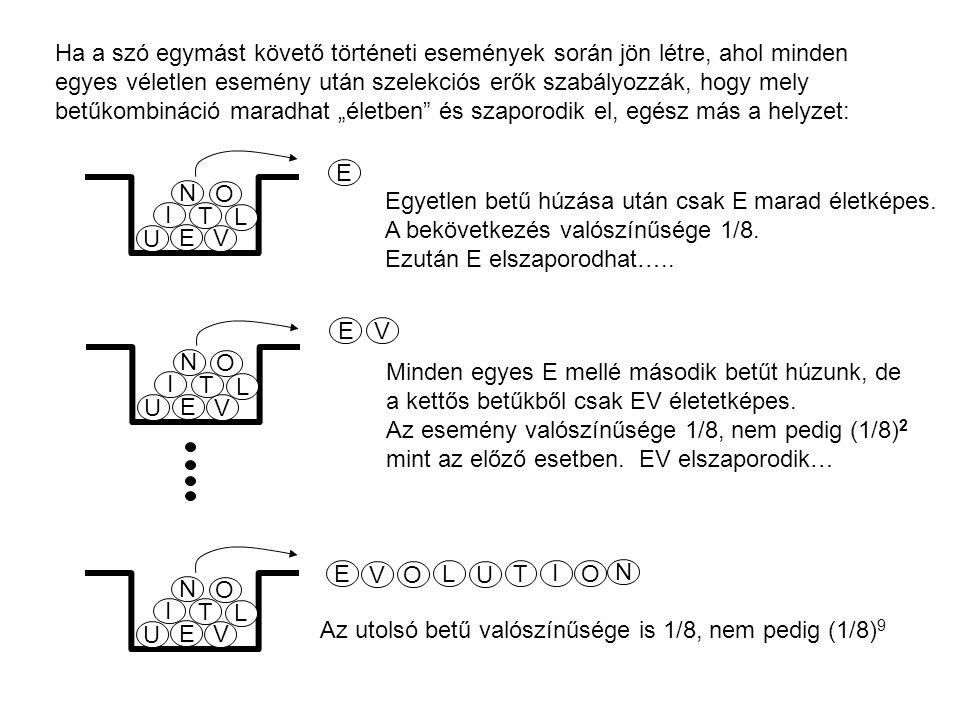 Egyetlen betű húzása után csak E marad életképes. A bekövetkezés valószínűsége 1/8. Ezután E elszaporodhat….. E Minden egyes E mellé második betűt húz