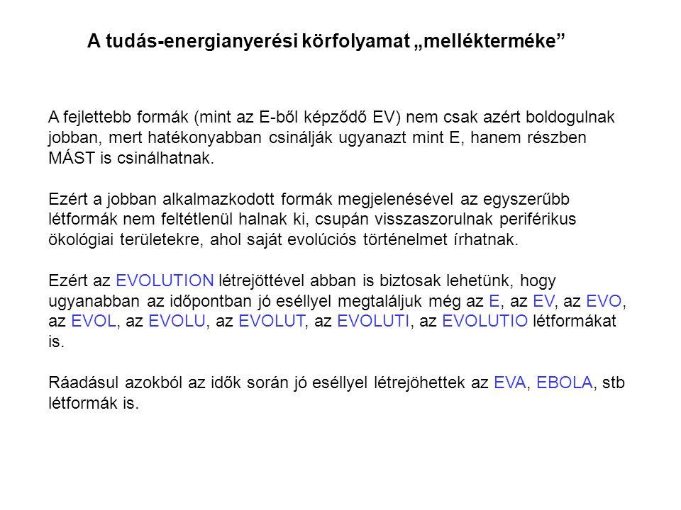 """A tudás-energianyerési körfolyamat """"mellékterméke"""" A fejlettebb formák (mint az E-ből képződő EV) nem csak azért boldogulnak jobban, mert hatékonyabba"""